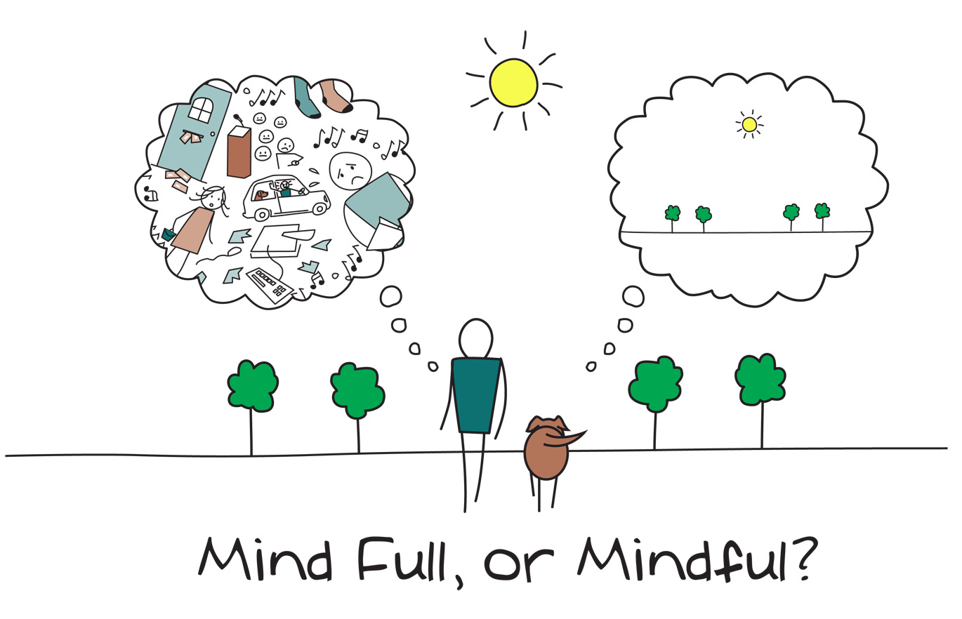 mindfulness course in Brighton and Hove