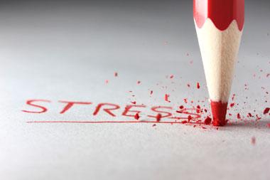 stress assessment, questionnaire, online, free